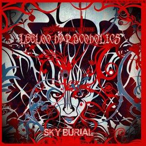 Imagen de 'Sky Burial'