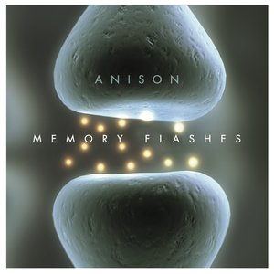 Bild für 'Memory Flashes'