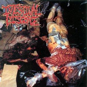 Image for 'The Hooker Butcher'