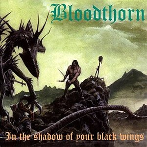 Image for 'In the Shadow of Your Black Wings'