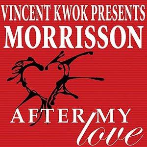 Bild für 'After My Love (New Mondo Mix)'