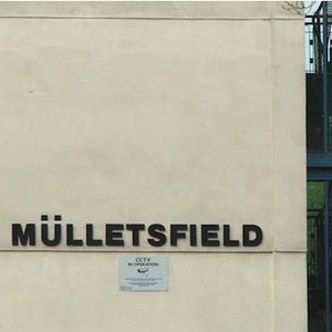 Image for 'Mulletsfield'