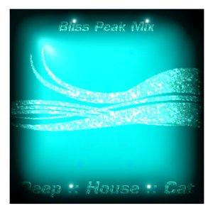 Image for 'September 2008 :: Cut 2 :: Bliss Peak Mix'