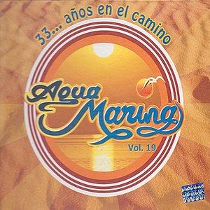 Image for '33... Años en el Camino, Vol. 19'