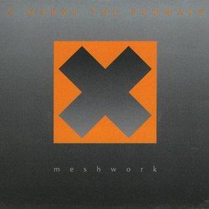 Image for 'Meshwork'