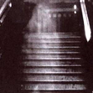 Imagem de 'Your Turn to Go It Alone'