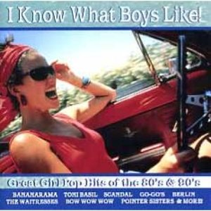 Image for 'I Know What Boys Like'