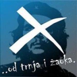 Image for '...od trnja i žaoka'