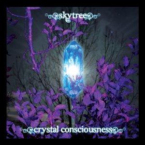 Immagine per 'Crystal Consciousness'
