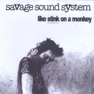 Image for 'Like Stink on a Monkey'