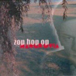 Bild für 'Zop Hop Op'