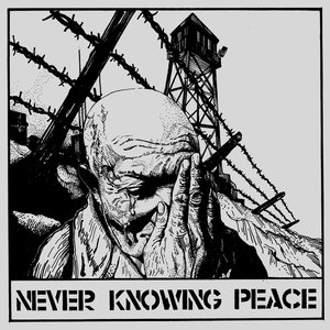 Image for 'Never Knowing Peace'