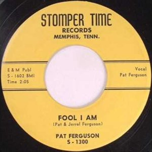 Image for 'Pat Ferguson'