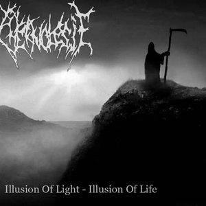 Image for 'Illusion of Light - Illusion of Life'