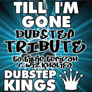 Immagine per 'Till I'm Gone (Dubstep Re-Mix)'