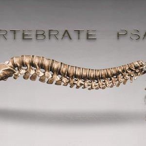 Image for 'Invertebrate Psalms'