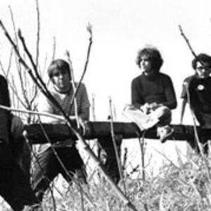 Bild för 'Elephant Band'