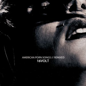 Image for 'American Porn Songs // Remixed'