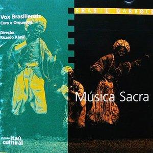 Image for 'Vox Brasiliensis'