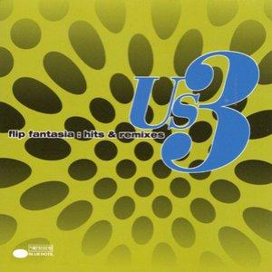 Imagem de 'Flip Fantasia: Hits & Remixes'