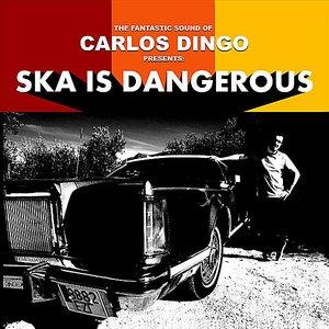 Image for 'Ska Is Dangerous'