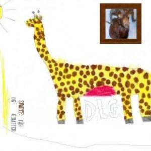 Image for 'Svarte f�r og Giraffer'