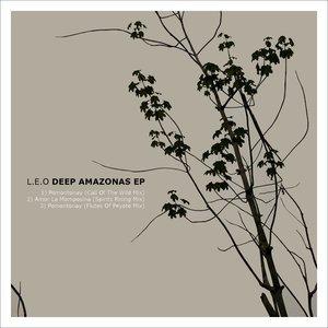 Image pour 'Deep Amazonas EP'