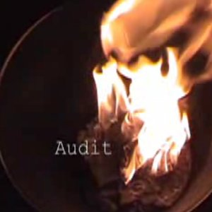 Image for 'Audit (Project Direct)'