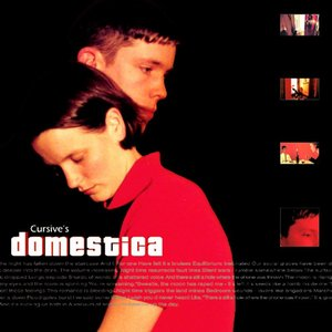 Image for 'Domestica'