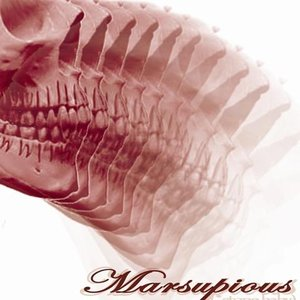 Image for 'Marsupious'