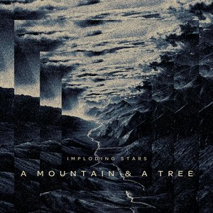 Image for 'A Mountain & a Tree'