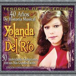 Image for 'Tesoros De Colección - 40 Años de Historia Musical'