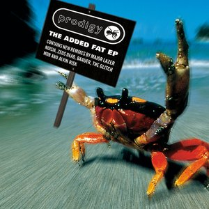 Image for 'The Added Fat EP'