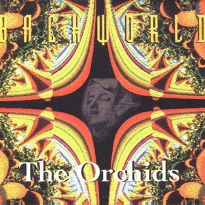 Image for 'The Orchids'