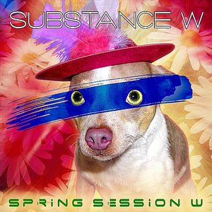 Image for 'Spring Session W'