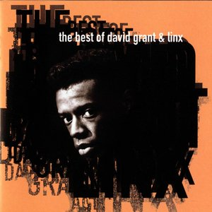 Image for 'The Best Of David Grant & Linx'