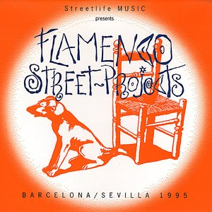 Image pour 'Flamenco Street Projects'