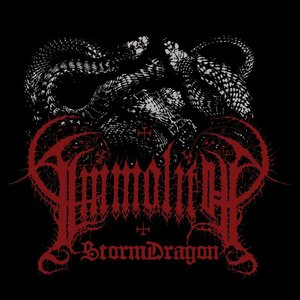 Image for 'Storm Dragon'
