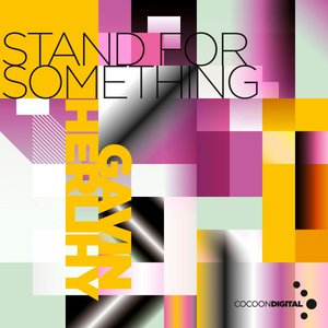 Image for 'Stand For Something'
