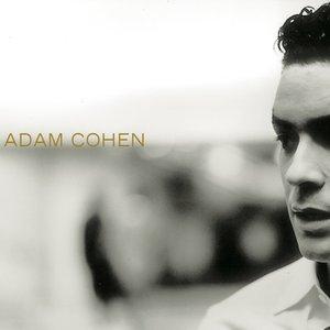 Image for 'Adam Cohen'