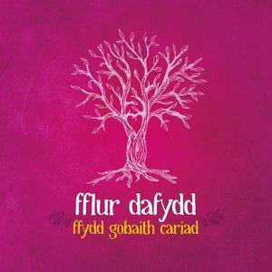 Image for 'Ffydd Gobaith Cariad'