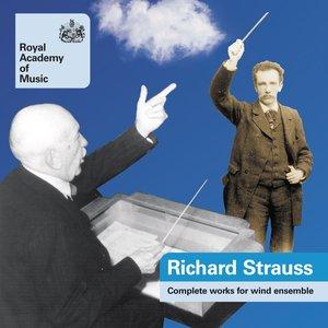 Bild för 'Strauss, Richard: Works for Wind Ensemble (Complete)'