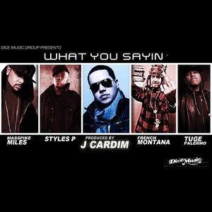 Image for 'What You Sayin' (feat. Styles P., Masspike Miles, Tuge Palermo and French Montana)'