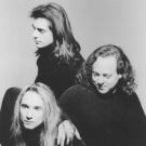 Image for 'David Torn, Mick Karn & Terry Bozzio'