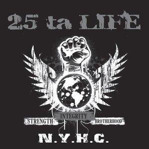 Image for 'Strength Integrity Brotherhood'