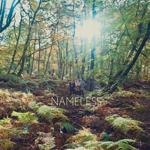Image for 'Nameless'