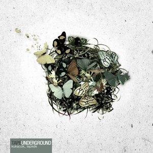 Image pour 'Kukacok, lepkék'
