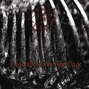 Image for 'Dead Soul In The Cage'