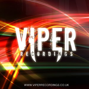 'VIPER RECORDINGS [VPR013]'の画像