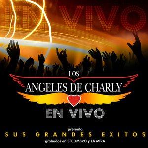 Image for 'En vivo-Sus grandes Exitos'